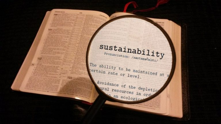 Reclaiming the Word 'Sustainability'