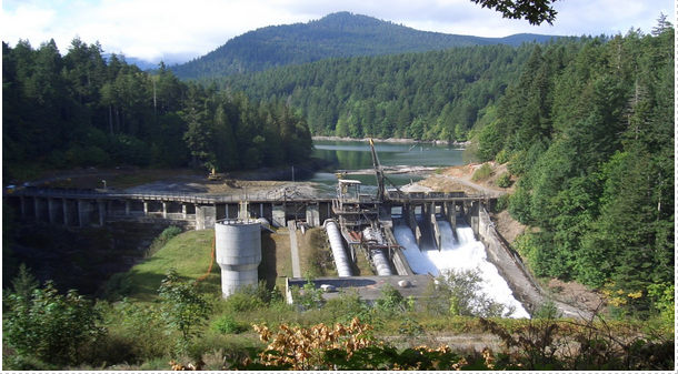 Dam Removals Gather Pace But New Hydropower Projects Threaten Migratory Fish Across the World