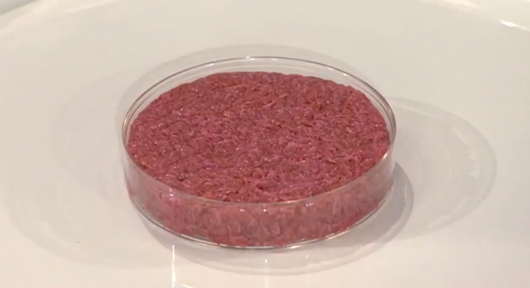 The Facts about Cultured Meat
