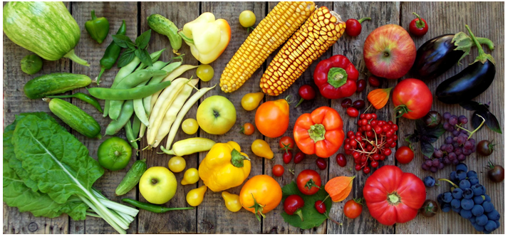 What Are Antioxidants? And Why Are They So Good For You?