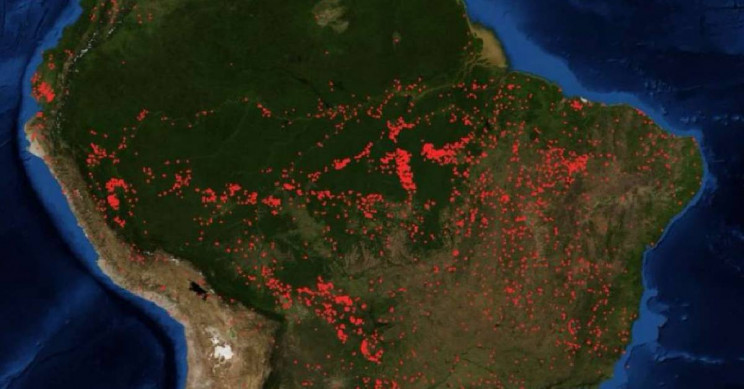 Amazon Fires: A Wake-Up Call for Humanity