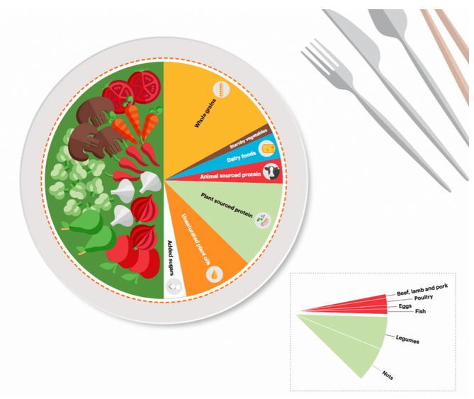 The Lancet Comission Report Defines a Sustainable Food Production System