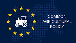 EU Common Agricultural Policy: How it works