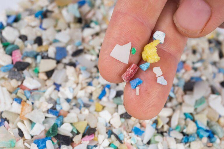 How dangerous are Microplastics?
