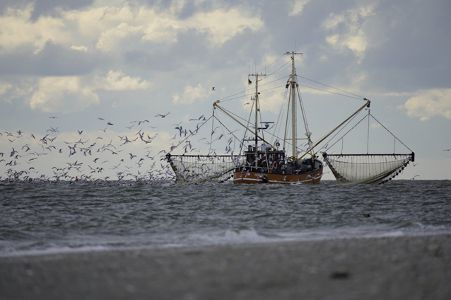 European Parliament approves budget to continue the destruction of nature at sea