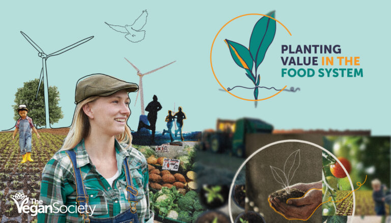 Planting Value in the Food System